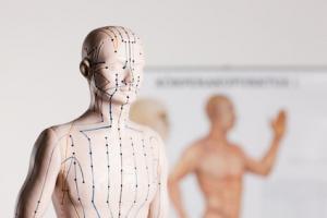 Bild eines Akupunkturmodells